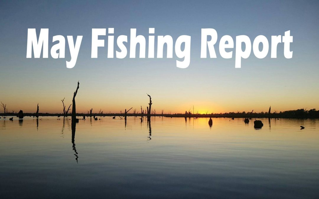 May Fishing Report