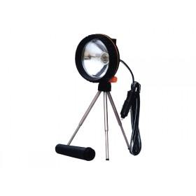 Spotlight - Halogen Dual Purpose
